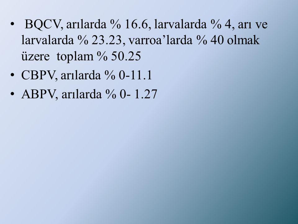 • BQCV, arılarda % 16.6, larvalarda % 4, arı ve larvalarda % 23.23, varroa'larda % 40 olmak üzere toplam % 50.25 • CBPV, arılarda % 0-11.1 • ABPV, arı