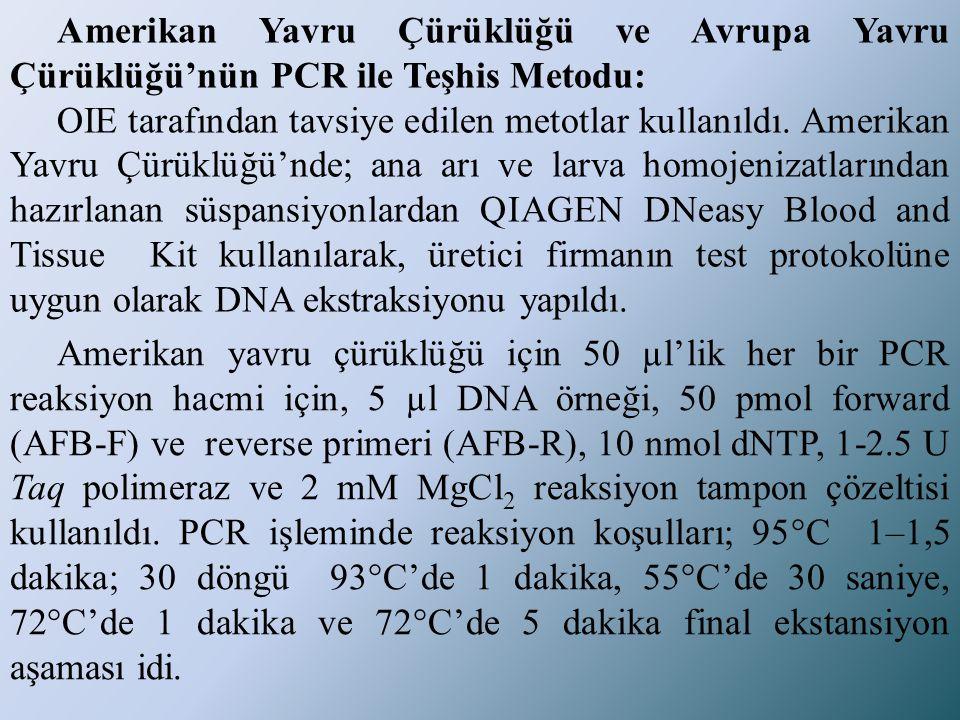 Amerikan Yavru Çürüklüğü ve Avrupa Yavru Çürüklüğü'nün PCR ile Teşhis Metodu: OIE tarafından tavsiye edilen metotlar kullanıldı. Amerikan Yavru Çürükl