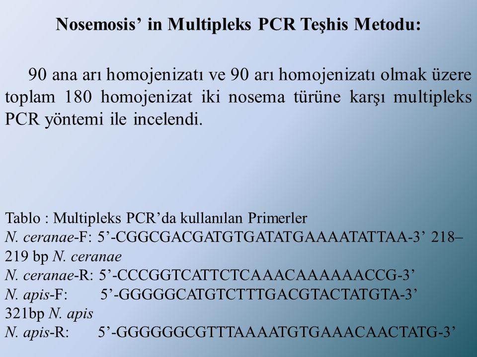 Nosemosis' in Multipleks PCR Teşhis Metodu: 90 ana arı homojenizatı ve 90 arı homojenizatı olmak üzere toplam 180 homojenizat iki nosema türüne karşı