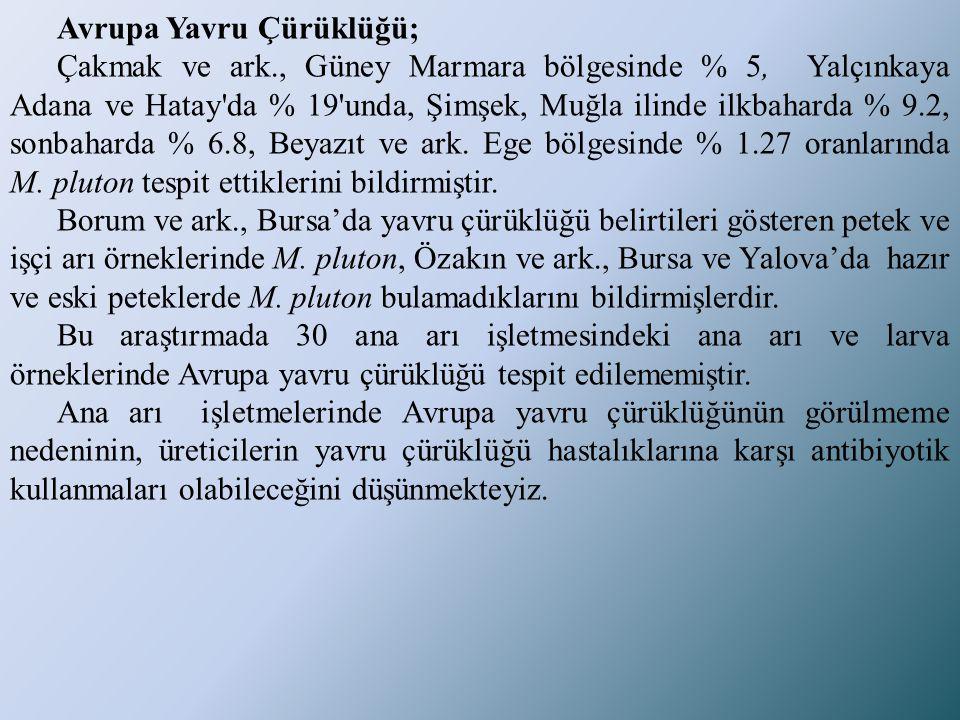 Avrupa Yavru Çürüklüğü; Çakmak ve ark., Güney Marmara bölgesinde % 5, Yalçınkaya Adana ve Hatay'da % 19'unda, Şimşek, Muğla ilinde ilkbaharda % 9.2, s