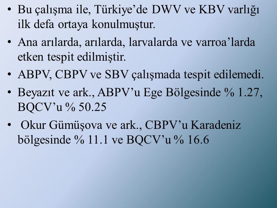 • Bu çalışma ile, Türkiye'de DWV ve KBV varlığı ilk defa ortaya konulmuştur. • Ana arılarda, arılarda, larvalarda ve varroa'larda etken tespit edilmiş