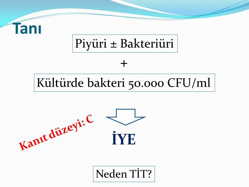Tanı Piyüri ± Bakteriüri + Kültürde bakteri 50.000 CFU/ml İYE Kanıt düzeyi: C Neden TİT?