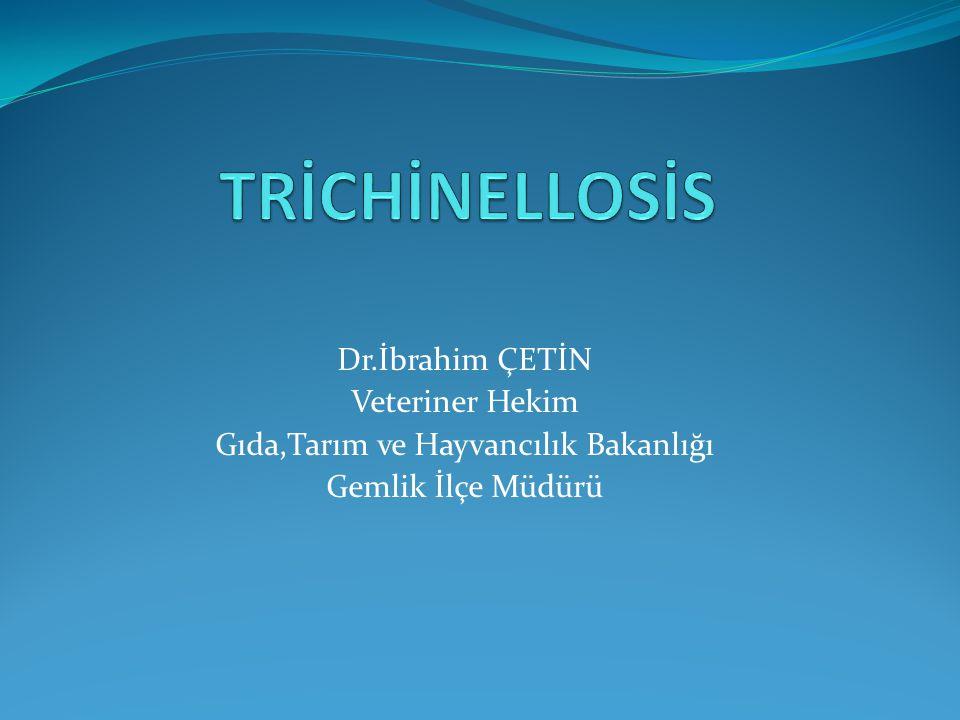 Trichinellosis  Trichinosis olarakta bilinir.