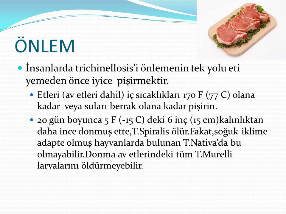 ÖNLEM  İnsanlarda trichinellosis'i önlemenin tek yolu eti yemeden önce iyice pişirmektir.  Etleri (av etleri dahil) iç sıcaklıkları 170 F (77 C) ola