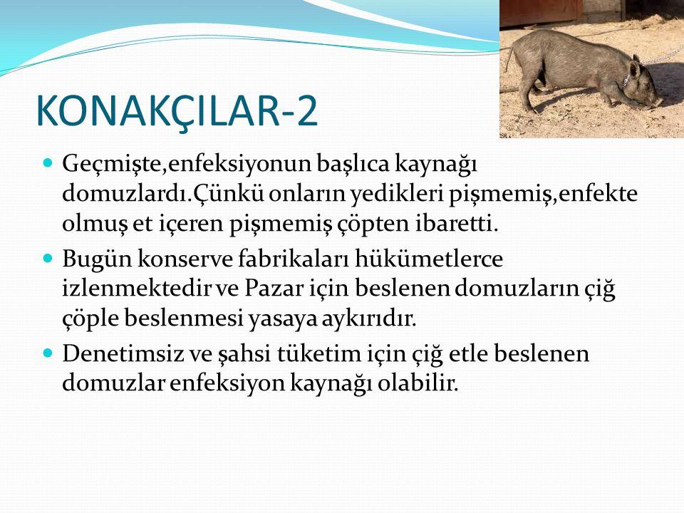 KONAKÇILAR-2  Geçmişte,enfeksiyonun başlıca kaynağı domuzlardı.Çünkü onların yedikleri pişmemiş,enfekte olmuş et içeren pişmemiş çöpten ibaretti.  B