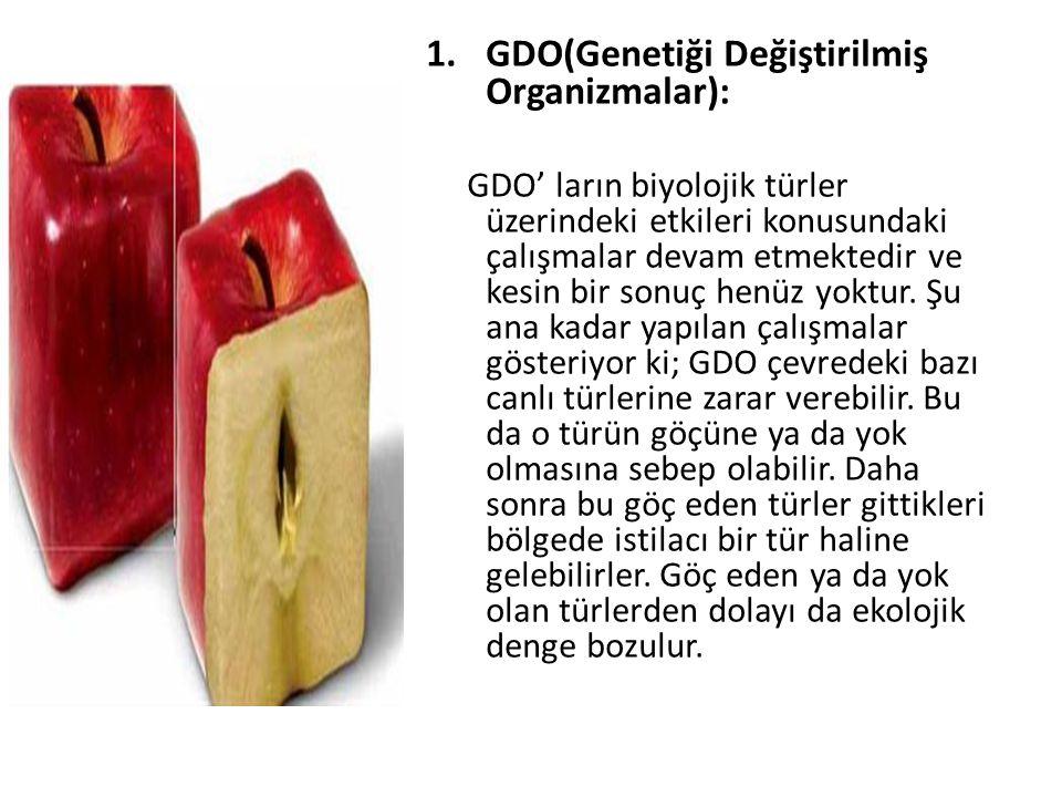1.GDO(Genetiği Değiştirilmiş Organizmalar): GDO' ların biyolojik türler üzerindeki etkileri konusundaki çalışmalar devam etmektedir ve kesin bir sonuç