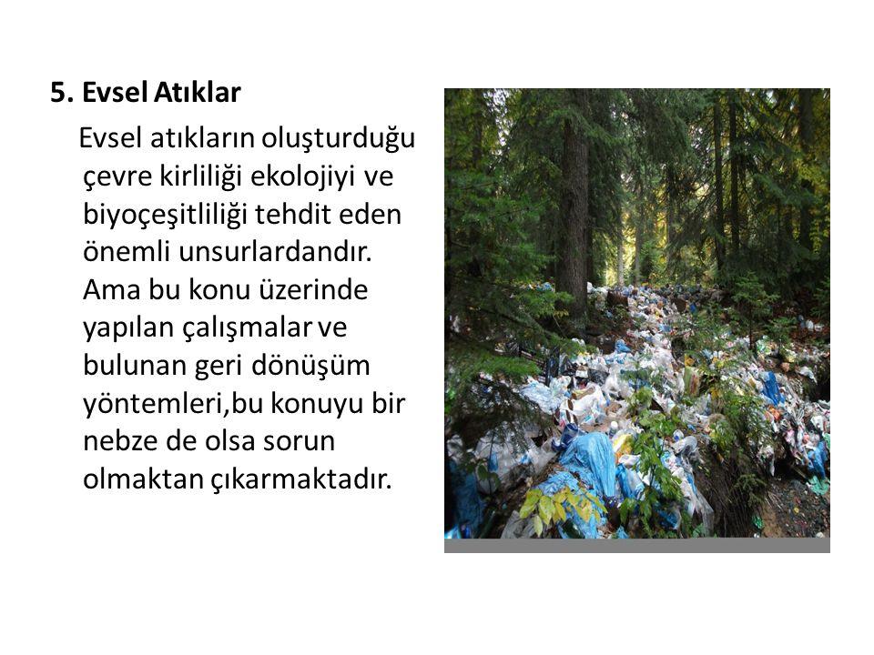 5. Evsel Atıklar Evsel atıkların oluşturduğu çevre kirliliği ekolojiyi ve biyoçeşitliliği tehdit eden önemli unsurlardandır. Ama bu konu üzerinde yapı