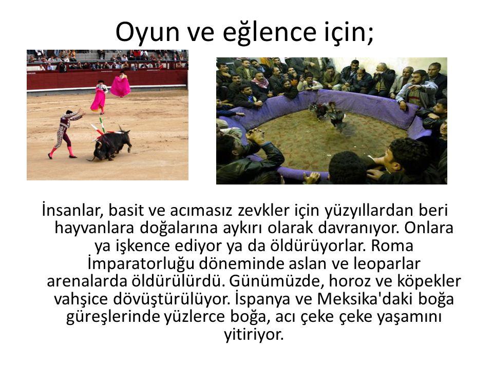 Oyun ve eğlence için; İnsanlar, basit ve acımasız zevkler için yüzyıllardan beri hayvanlara doğalarına aykırı olarak davranıyor. Onlara ya işkence edi