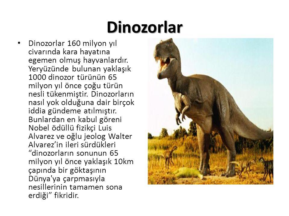 Dinozorlar • Dinozorlar 160 milyon yıl civarında kara hayatına egemen olmuş hayvanlardır. Yeryüzünde bulunan yaklaşık 1000 dinozor türünün 65 milyon y