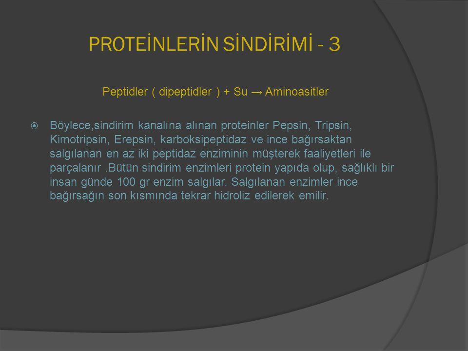 PROTEİNLERİN SİNDİRİMİ - 3 Peptidler ( dipeptidler ) + Su → Aminoasitler  Böylece,sindirim kanalına alınan proteinler Pepsin, Tripsin, Kimotripsin, E