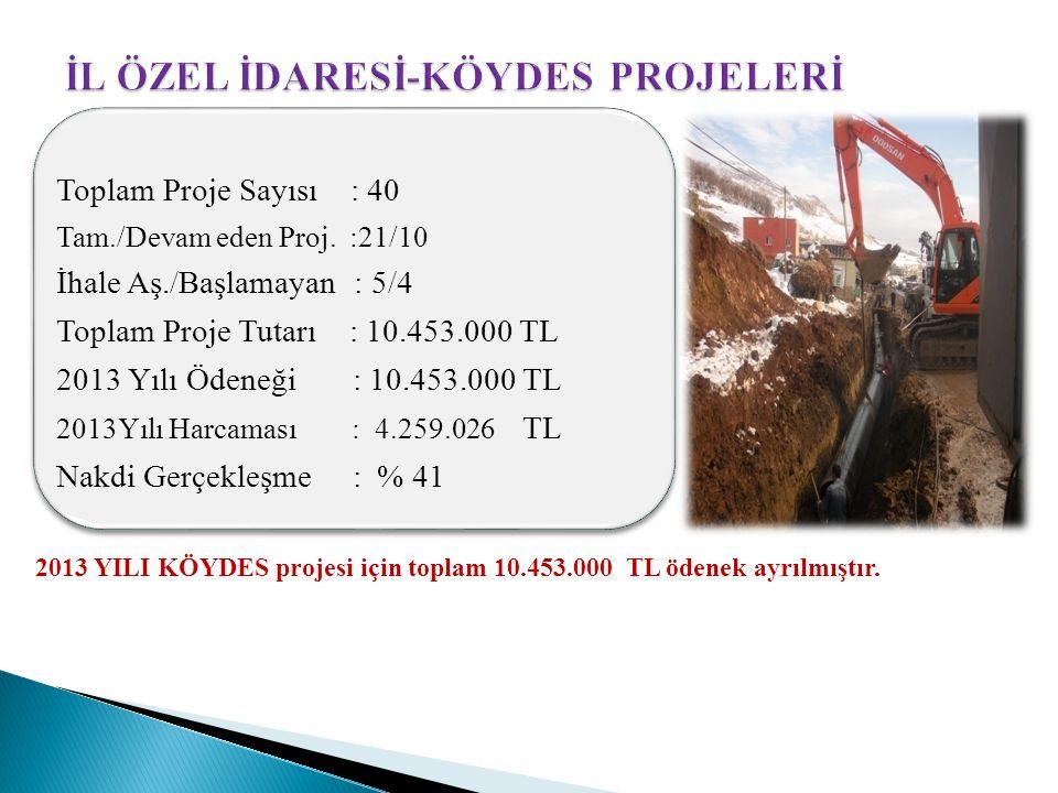 2013 YILI KÖYDES projesi için toplam 10.453.000 TL ödenek ayrılmıştır. Toplam Proje Sayısı : 40 Tam./Devam eden Proj. :21/10 İhale Aş./Başlamayan : 5/