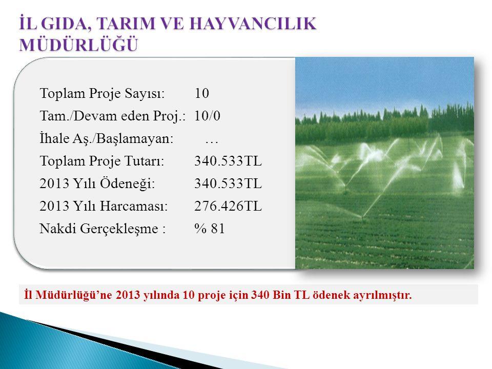 İl Müdürlüğü'ne 2013 yılında 10 proje için 340 Bin TL ödenek ayrılmıştır.