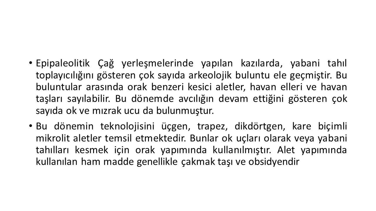 Natufyen • Natufyen, Epipaleolitik'in en önemli aşamasıdır.