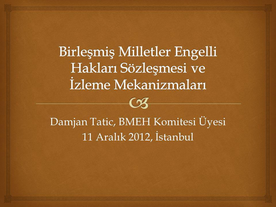 Damjan Tatic, BMEH Komitesi Üyesi 11 Aralık 2012, İstanbul