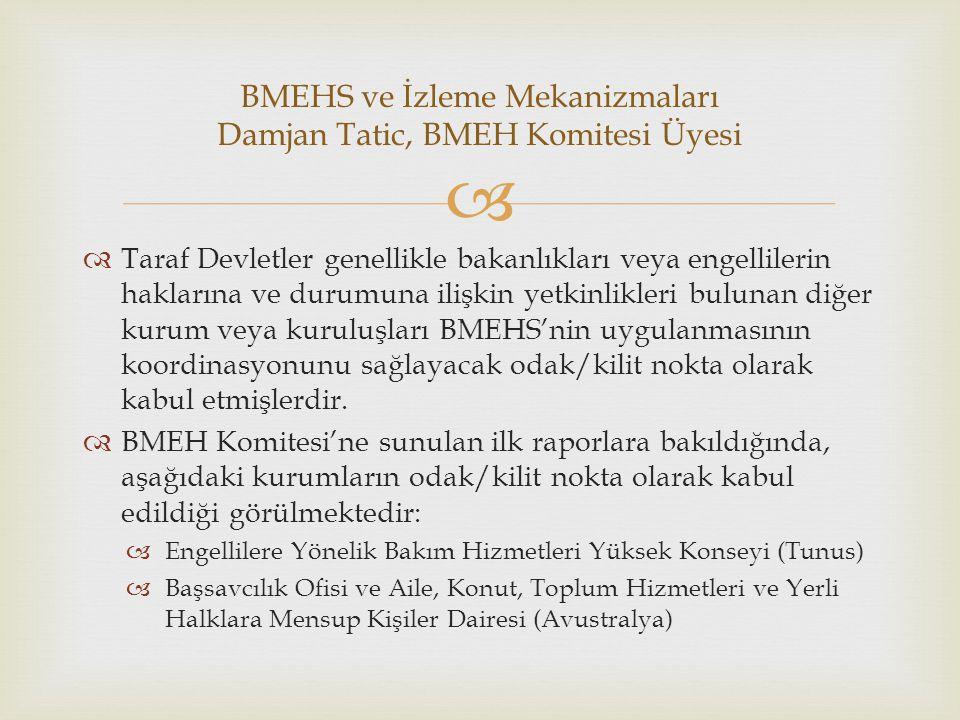   Taraf Devletler genellikle bakanlıkları veya engellilerin haklarına ve durumuna ilişkin yetkinlikleri bulunan diğer kurum veya kuruluşları BMEHS'n