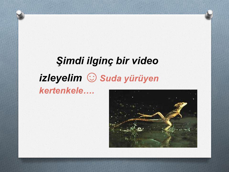 Şimdi ilginç bir video izleyelim ☺ Suda yürüyen kertenkele….