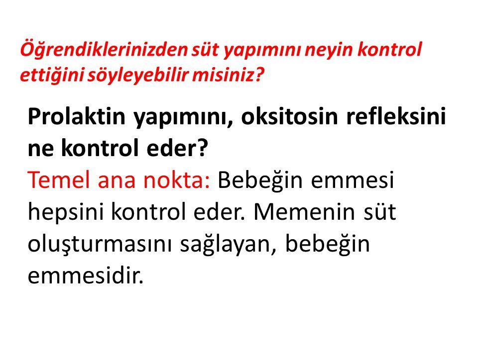 ANNE EMZİRME SÜRESİNCE MEMESİNİ NASIL TUTUYOR .