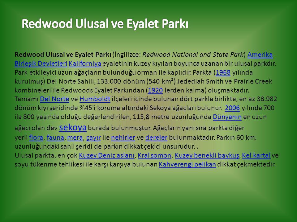 Redwood Ulusal ve Eyalet Parkı (İngilizce: Redwood National and State Park) Amerika Birleşik Devletleri Kaliforniya eyaletinin kuzey kıyıları boyunca uzanan bir ulusal parkdır.