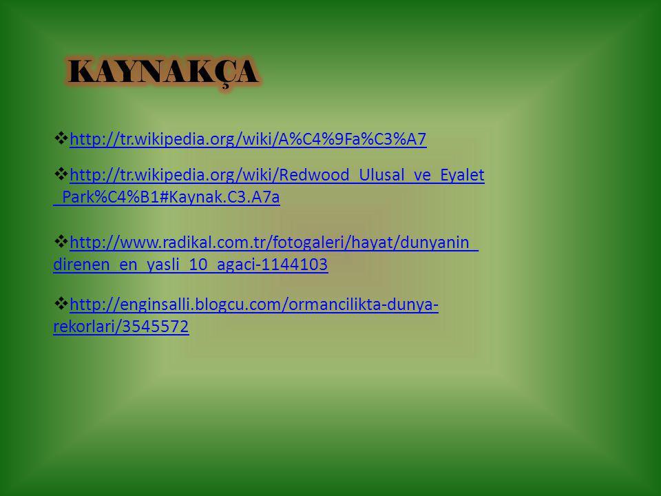  http://enginsalli.blogcu.com/ormancilikta-dunya- rekorlari/3545572 http://enginsalli.blogcu.com/ormancilikta-dunya- rekorlari/3545572  http://www.r