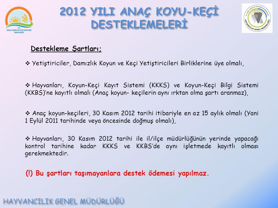 Destekleme Şartları;  Yetiştiriciler, Damızlık Koyun ve Keçi Yetiştiricileri Birliklerine üye olmalı,  Hayvanları, Koyun-Keçi Kayıt Sistemi (KKKS) ve Koyun-Keçi Bilgi Sistemi (KKBS)'ne kayıtlı olmalı (Anaç koyun- keçilerin aynı ırktan olma şartı aranmaz),  Anaç koyun-keçileri, 30 Kasım 2012 tarihi itibariyle en az 15 aylık olmalı (Yani 1 Eylül 2011 tarihinde veya öncesinde doğmuş olmalı),  Hayvanları, 30 Kasım 2012 tarihi ile il/ilçe müdürlüğünün yerinde yapacağı kontrol tarihine kadar KKKS ve KKBS'de aynı işletmede kayıtlı olması gerekmektedir.