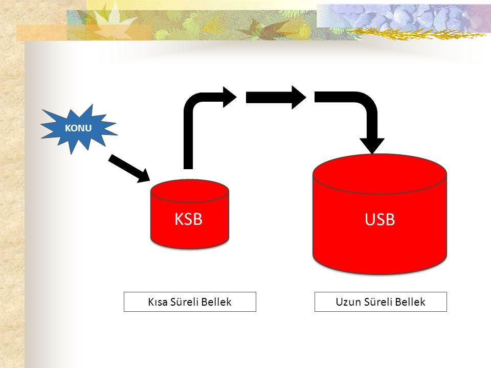 KONU Uzun Süreli Bellek KSB USB Kısa Süreli Bellek Panik Stres Kaygı DERS ÇALIŞIRKEN