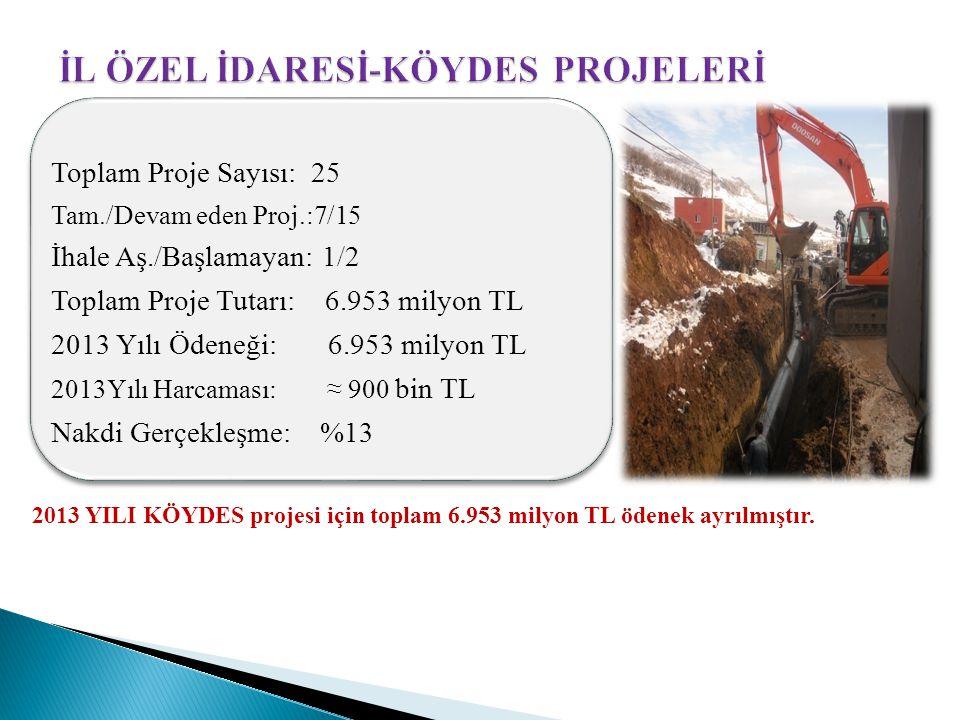 2013 YILI KÖYDES projesi için toplam 6.953 milyon TL ödenek ayrılmıştır. Toplam Proje Sayısı: 25 Tam./Devam eden Proj.:7/15 İhale Aş./Başlamayan: 1/2