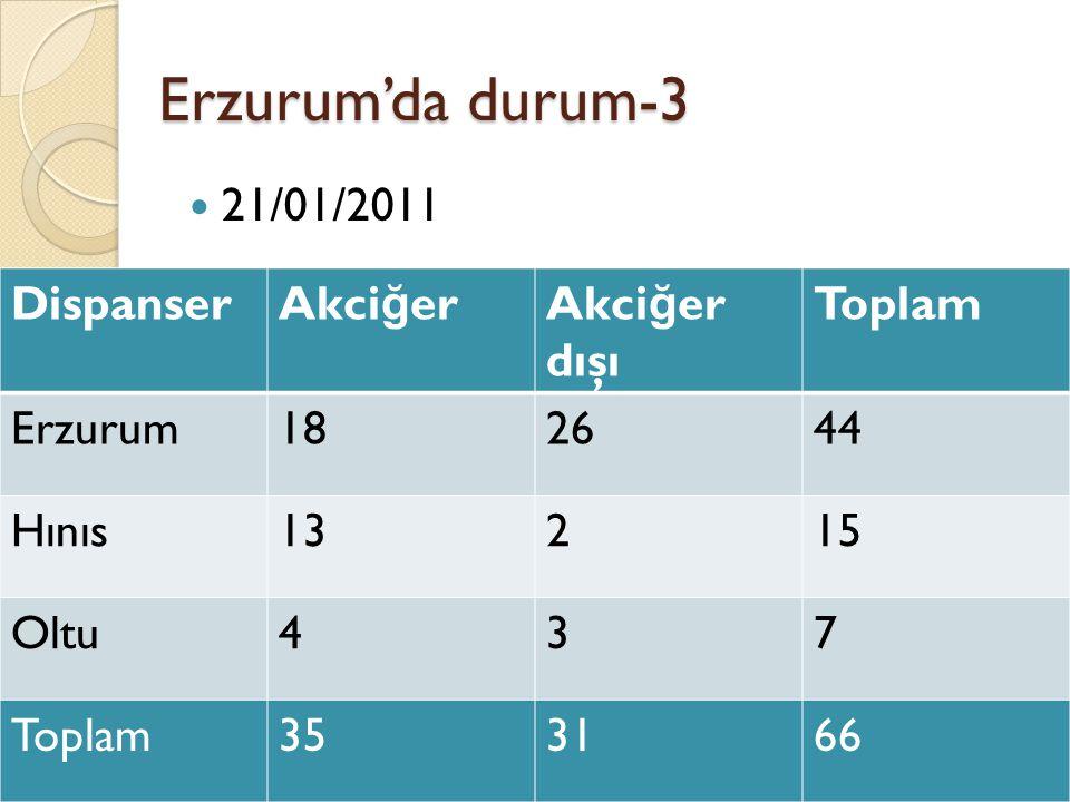 Erzurum'da durum-3  21/01/2011 DispanserAkci ğ erAkci ğ er dışı Toplam Erzurum182644 Hınıs13215 Oltu437 Toplam353166