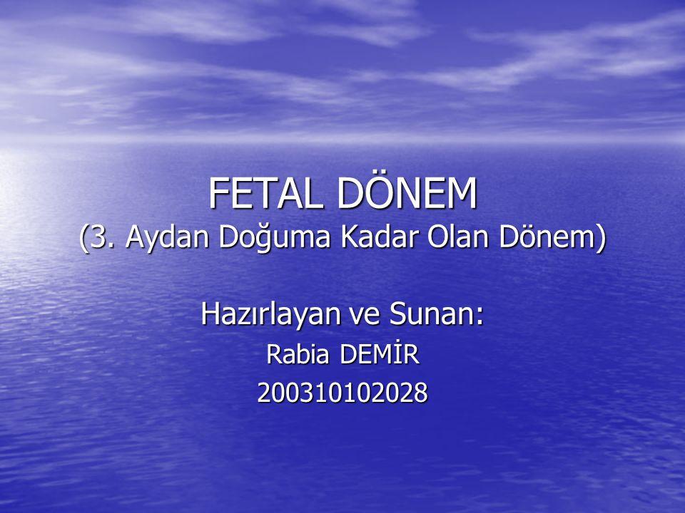 FETAL DÖNEM (3. Aydan Doğuma Kadar Olan Dönem) Hazırlayan ve Sunan: Rabia DEMİR 200310102028