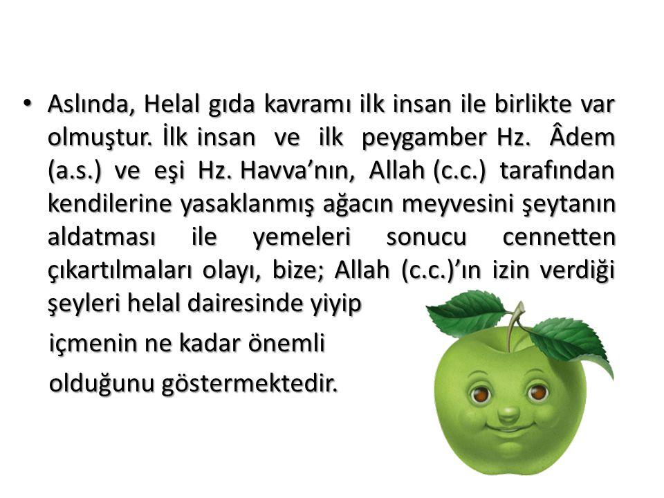 • Aslında, Helal gıda kavramı ilk insan ile birlikte var olmuştur. İlk insan ve ilk peygamber Hz. Âdem (a.s.) ve eşi Hz. Havva'nın, Allah (c.c.) taraf