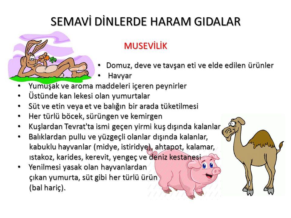 SEMAVİ DİNLERDE HARAM GIDALAR MUSEVİLİK • Domuz, deve ve tavşan eti ve elde edilen ürünler • Havyar • Yumuşak ve aroma maddeleri içeren peynirler • Üs