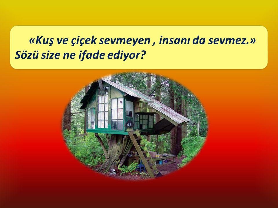 Küçük bir kulübede mutlu yaşamak mümkün müdür? «Kuş ve çiçek sevmeyen, insanı da sevmez.» Sözü size ne ifade ediyor? «Kuş ve çiçek sevmeyen, insanı da
