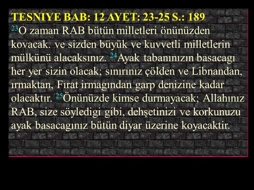 AMOS BAB: 9 AYET: 12 S.: 872 12 Ta ki, Edomun bakiyesini, ve üzerlerine ismim çagırılan bütün milletleri mülk edinsinler, bunu yapan RAB diyor. ÇIKIS
