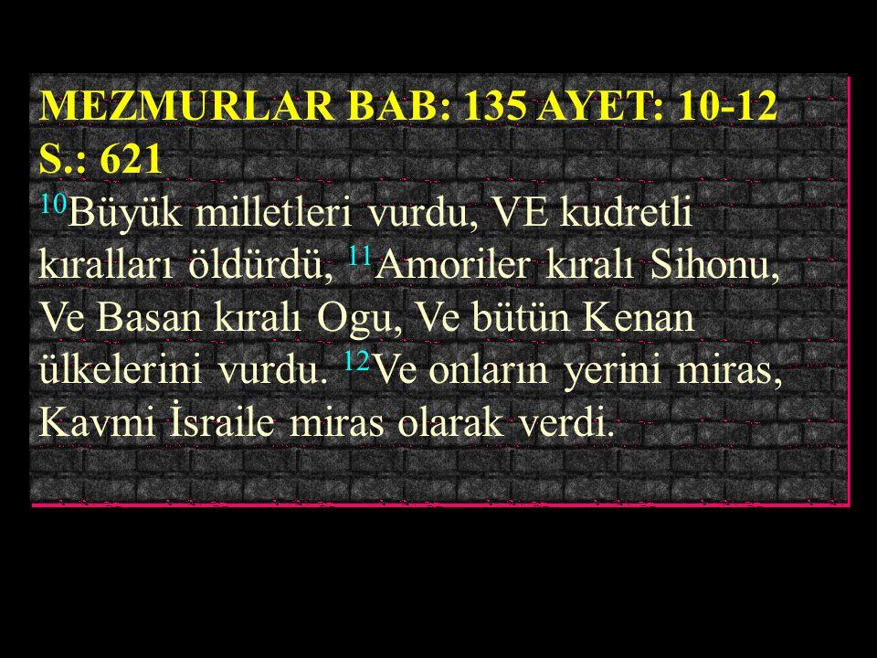 TESNIYE BAB: 12 AYET: 23-25 S.: 189 23 O zaman RAB bütün milletleri önünüzden kovacak. ve sizden büyük ve kuvvetli milletlerin mülkünü alacaksınız. 24
