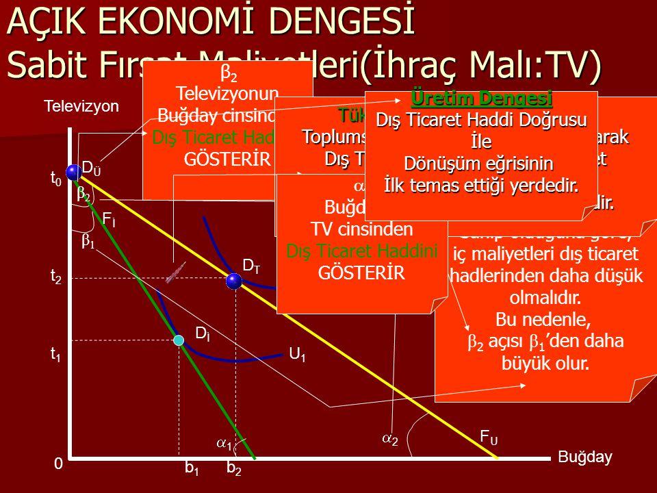 DİDİ 11 β1β1 AÇIK EKONOMİ DENGESİ Sabit Fırsat Maliyetleri(İhraç Malı:TV) U1U1 U2U2 Televizyon Buğday FİFİ FUFU β2β2 DTDT DÜDÜ b1b1 b2b2 t1t1 t2t2 22 t0t0  β 2 Televizyonun Buğday cinsinden Dış Ticaret Haddini GÖSTERİR Örnek Toplum, Televizyonda Karşılaştırmalı Üstünlüğe Sahip olduğuna göre, iç maliyetleri dış ticaret hadlerinden daha düşük olmalıdır.