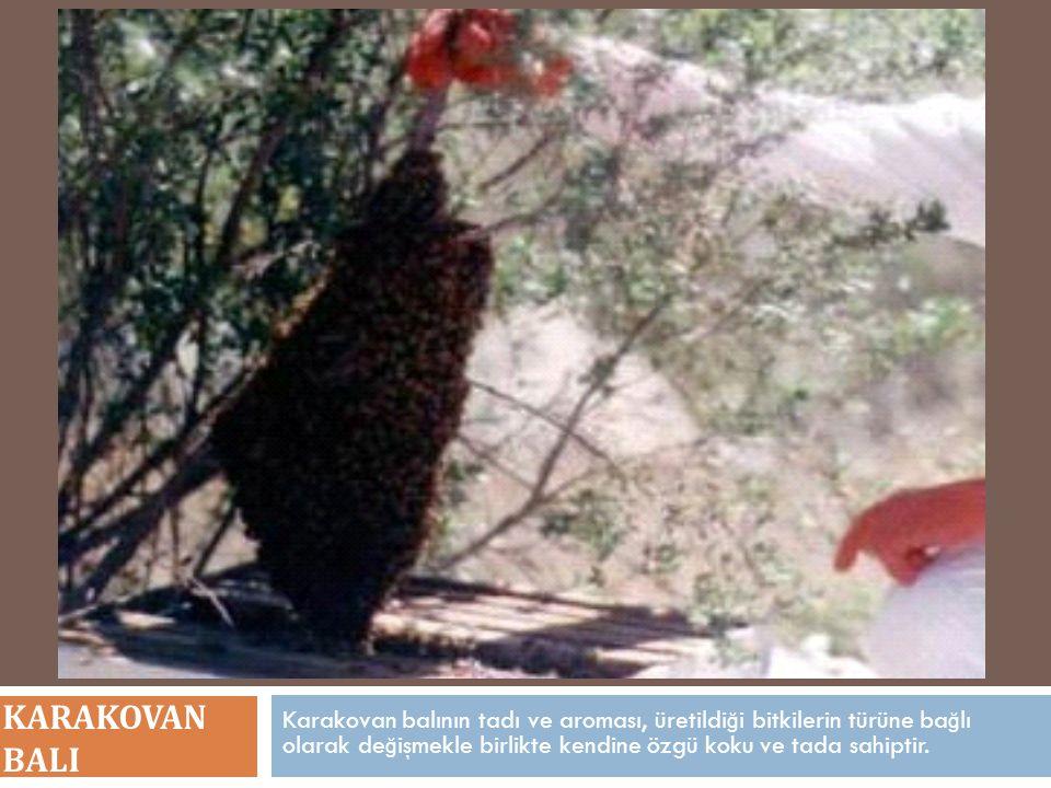 Karakovan balının tadı ve aroması, üretildi ğ i bitkilerin türüne ba ğ lı olarak de ğ işmekle birlikte kendine özgü koku ve tada sahiptir.