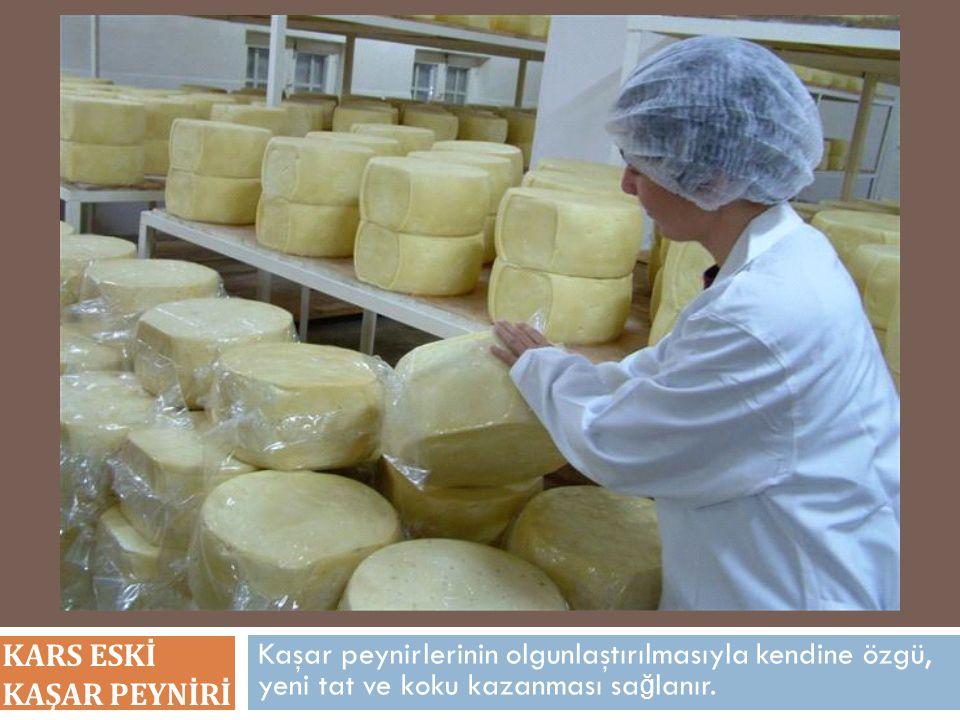 Kaşar peynirlerinin olgunlaştırılmasıyla kendine özgü, yeni tat ve koku kazanması sa ğ lanır. KARS ESKİ KAŞAR PEYNİRİ
