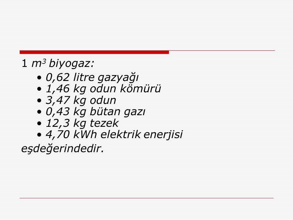1 m 3 biyogaz: • 0,62 litre gazyağı • 1,46 kg odun kömürü • 3,47 kg odun • 0,43 kg bütan gazı • 12,3 kg tezek • 4,70 kWh elektrik enerjisi eşdeğerindedir.