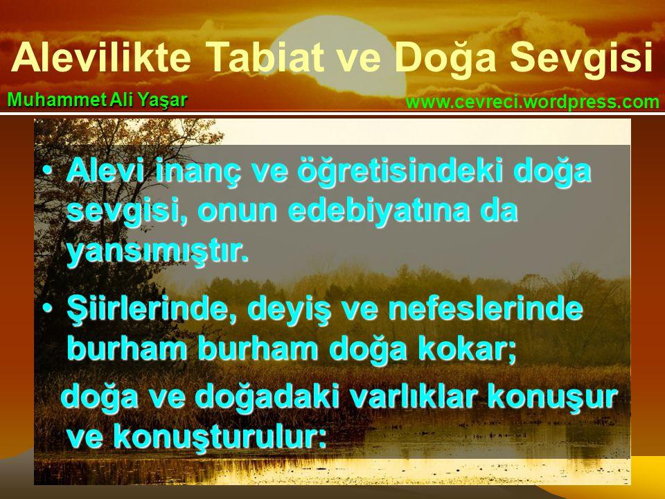 Alevilikte Tabiat ve Doğa Sevgisi www.cevreci.wordpress.com Muhammet Ali Yaşar •Alevi inanç ve öğretisindeki doğa sevgisi, onun edebiyatına da yansımı