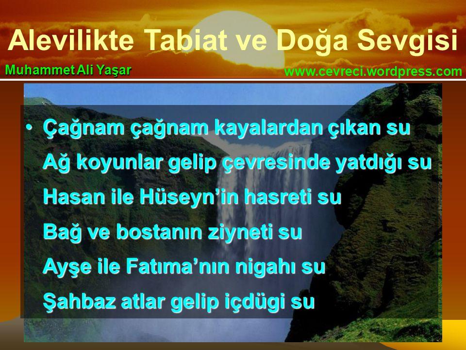 Alevilikte Tabiat ve Doğa Sevgisi www.cevreci.wordpress.com Muhammet Ali Yaşar •Çağnam çağnam kayalardan çıkan su Ağ koyunlar gelip çevresinde yatdığı