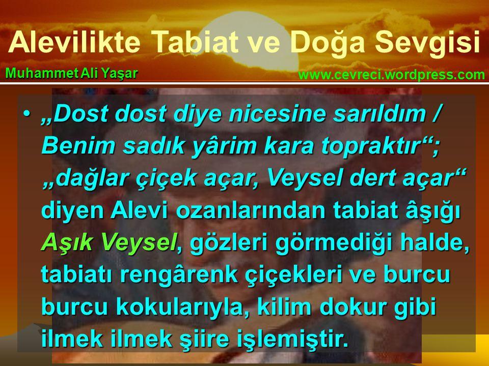 """Alevilikte Tabiat ve Doğa Sevgisi www.cevreci.wordpress.com Muhammet Ali Yaşar •""""Dost dost diye nicesine sarıldım / Benim sadık yârim kara topraktır ; """"dağlar çiçek açar, Veysel dert açar """"dağlar çiçek açar, Veysel dert açar diyen Alevi ozanlarından tabiat âşığı Aşık Veysel, gözleri görmediği halde, tabiatı rengârenk çiçekleri ve burcu burcu kokularıyla, kilim dokur gibi ilmek ilmek şiire işlemiştir."""