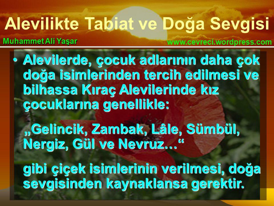 Alevilikte Tabiat ve Doğa Sevgisi www.cevreci.wordpress.com Muhammet Ali Yaşar •Alevilerde, çocuk adlarının daha çok doğa isimlerinden tercih edilmesi
