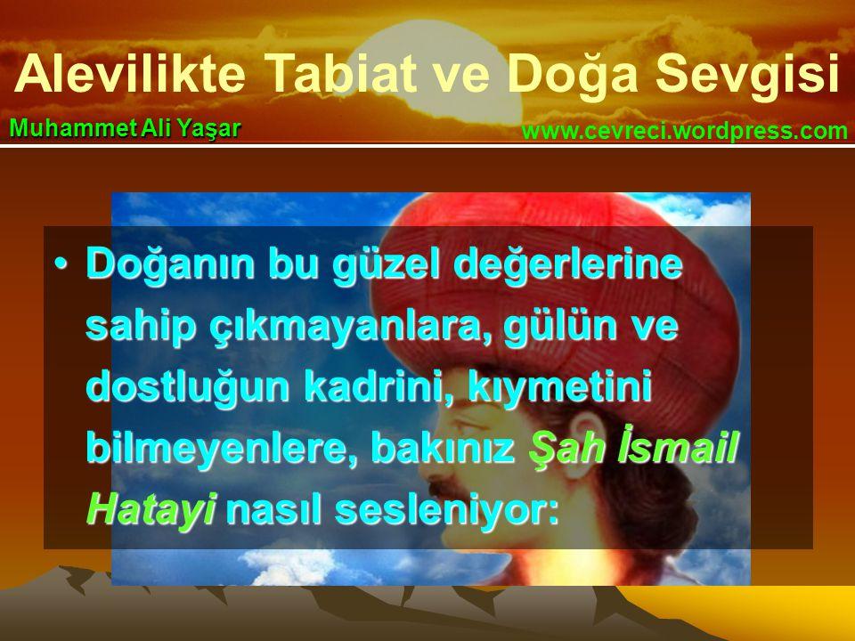 Alevilikte Tabiat ve Doğa Sevgisi www.cevreci.wordpress.com Muhammet Ali Yaşar •Doğanın bu güzel değerlerine sahip çıkmayanlara, gülün ve dostluğun ka