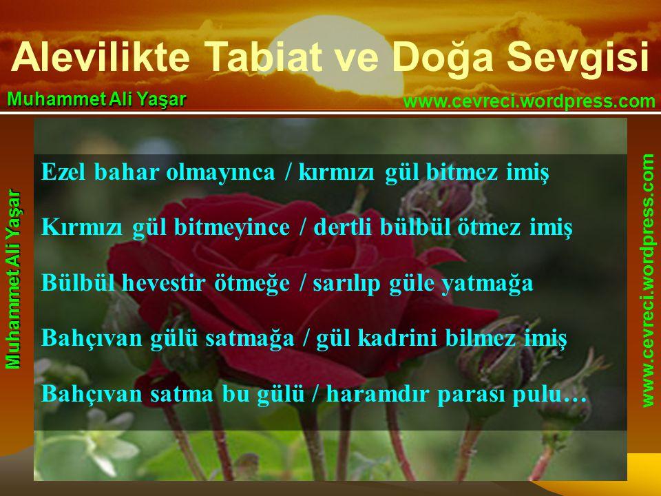 Alevilikte Tabiat ve Doğa Sevgisi www.cevreci.wordpress.com Muhammet Ali Yaşar www.cevreci.wordpress.com Muhammet Ali Yaşar Ezel bahar olmayınca / kırmızı gül bitmez imiş Kırmızı gül bitmeyince / dertli bülbül ötmez imiş Bülbül hevestir ötmeğe / sarılıp güle yatmağa Bahçıvan gülü satmağa / gül kadrini bilmez imiş Bahçıvan satma bu gülü / haramdır parası pulu…