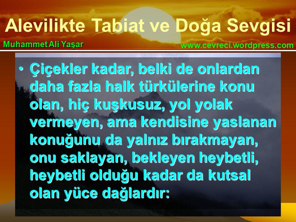 Alevilikte Tabiat ve Doğa Sevgisi www.cevreci.wordpress.com Muhammet Ali Yaşar •Çiçekler kadar, belki de onlardan daha fazla halk türkülerine konu ola