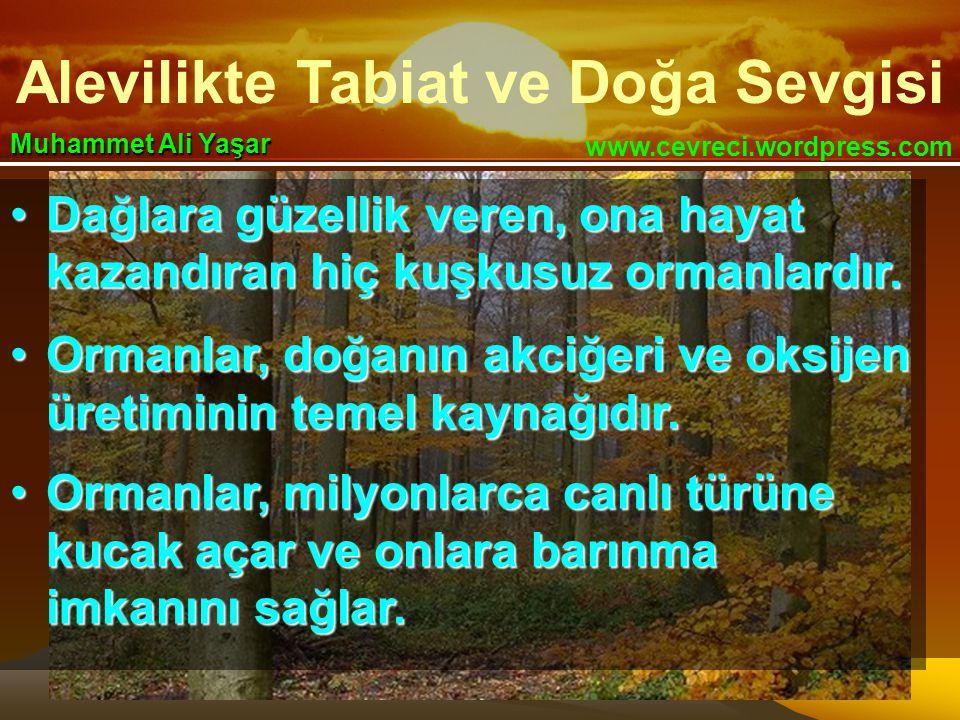 Alevilikte Tabiat ve Doğa Sevgisi www.cevreci.wordpress.com Muhammet Ali Yaşar •Dağlara güzellik veren, ona hayat kazandıran hiç kuşkusuz ormanlardır.