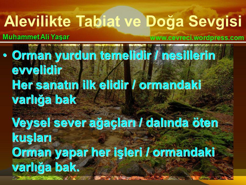 Alevilikte Tabiat ve Doğa Sevgisi www.cevreci.wordpress.com Muhammet Ali Yaşar •Orman yurdun temelidir / nesillerin evvelidir Her sanatın ilk elidir / ormandaki varlığa bak Veysel sever ağaçları / dalında öten kuşları Orman yapar her işleri / ormandaki varlığa bak.