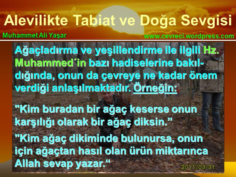Alevilikte Tabiat ve Doğa Sevgisi www.cevreci.wordpress.com Muhammet Ali Yaşar Ağaçladırma ve yeşillendirme ile ilgili Hz. Muhammed´in bazı hadiseleri