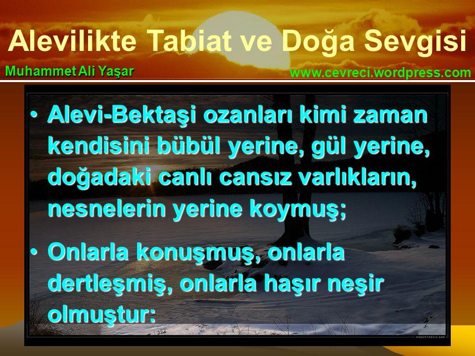 Alevilikte Tabiat ve Doğa Sevgisi www.cevreci.wordpress.com Muhammet Ali Yaşar •Alevi-Bektaşi ozanları kimi zaman kendisini bübül yerine, gül yerine,