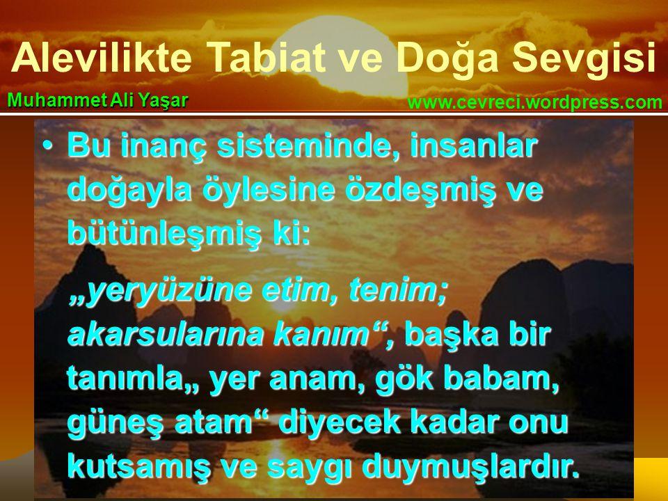 """Alevilikte Tabiat ve Doğa Sevgisi www.cevreci.wordpress.com Muhammet Ali Yaşar •Bu inanç sisteminde, insanlar doğayla öylesine özdeşmiş ve bütünleşmiş ki: """"yeryüzüne etim, tenim; akarsularına kanım , başka bir tanımla"""" yer anam, gök babam, güneş atam diyecek kadar onu kutsamış ve saygı duymuşlardır."""