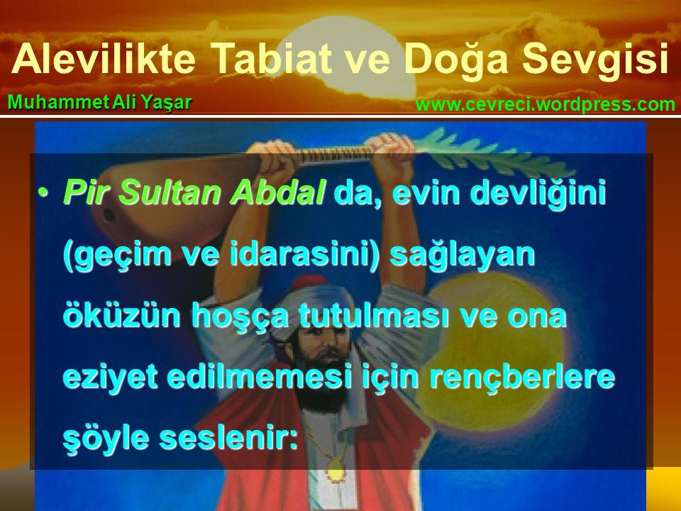 Alevilikte Tabiat ve Doğa Sevgisi www.cevreci.wordpress.com Muhammet Ali Yaşar •Pir Sultan Abdal da, evin devliğini (geçim ve idarasini) sağlayan öküzün hoşça tutulması ve ona eziyet edilmemesi için rençberlere şöyle seslenir: